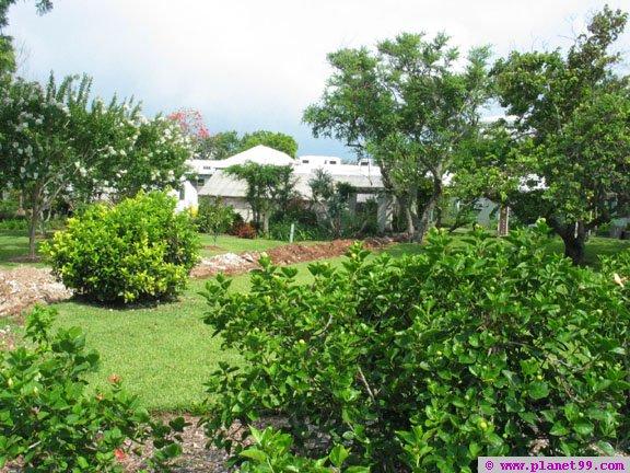 Botanical Gardens , Paget, Bermuda