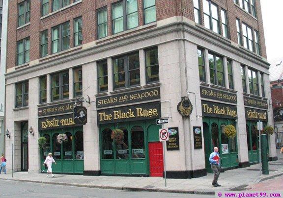 Black Rose , Boston