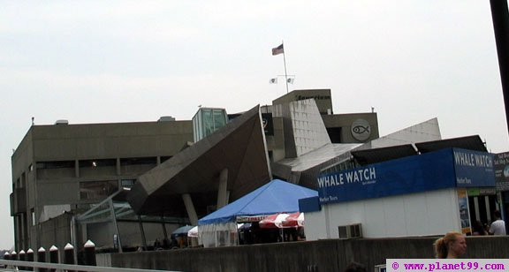 New England Aquarium , Boston