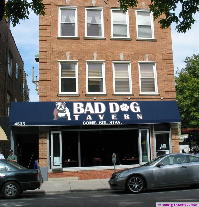 Bad Dog Tavern , Chicago