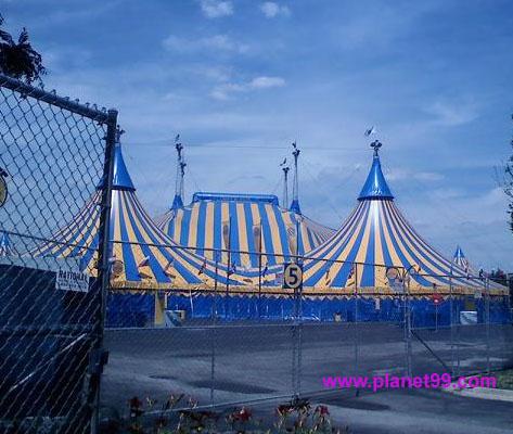 Cirque Du Soleil Kooza,Chicago