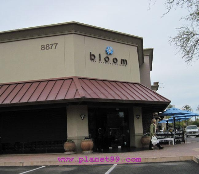 Bloom , Scottsdale
