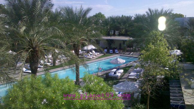 Hotel Theodore , Scottsdale