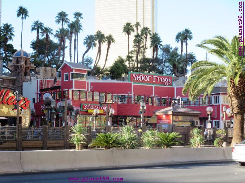 Senor Frog's , Las Vegas