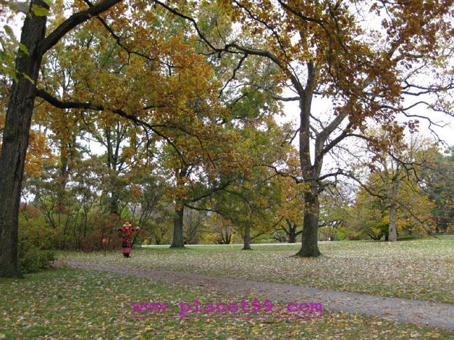 Morton Arboretum , Lisle