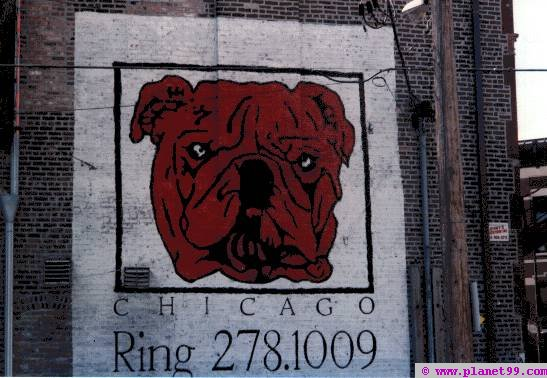 Chicago , Red Dog Club