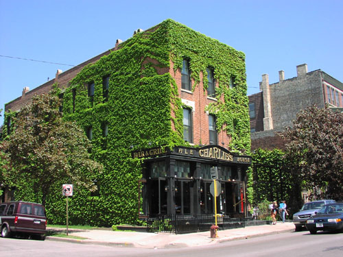 Charlie's Ale House  , Chicago